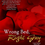 Spotlight & Giveaway: Wrong Bed, Right Guy by Katee Roberts