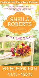 VBT What She Wants Book Cover Banner
