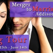 Spotlight & Giveaway: Merger to Marriage by Addison Fox