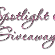 Spotlight & Giveaway: If The Shoe Fits by Megan Mulry