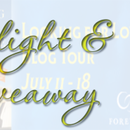 Spotlight & Giveaway: Looking For Trouble by Erin Kern