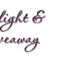 Spotlight & Giveaway: Rescuing Dawn by Nicole Flockton