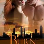 REVIEW: Burn by Jenny Lyn