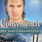 REVIEW: Conveniently by Debra Kayn