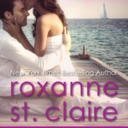 Spotlight & Giveaway: Seduction on the Sand by Roxanne St. Claire