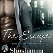 Spotlight & Giveaway: The Escape by Shoshanna Evers
