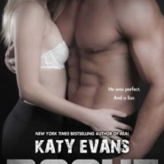 Spotlight & Giveaway: Rogue by Katy Evans
