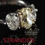REVIEW: Stranded With A Billionaire by Jessica Clare