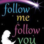 Spotlight & Giveaway: Follow Me Follow You by Laura E. James