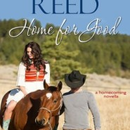 Spotlight & Giveaway: Home for Good by Terri Reed