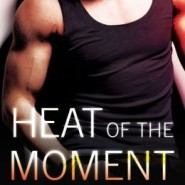 REVIEW: Heat Of The Moment by Robin Kaye