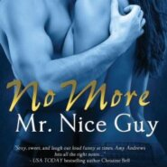 Edits Unleashed: No More Mr Nice Guy by Amy Andrews