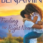 Spotlight & Giveaway: Finding Mr. Right Now by Meg Benjamin
