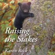 Spotlight & Giveaway: Raising the Stakes by Karen Rock