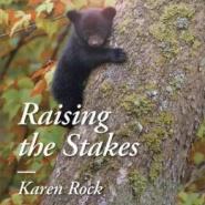 Spotlight & Giveaway: Raising the Stakes by Karen Rock