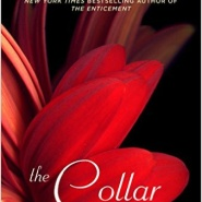 Spotlight & Giveaway: The Collar by Tara Sue Me