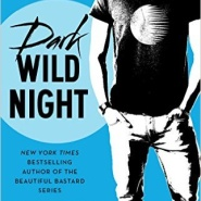 Spotlight & Giveaway: Dark Wild Night by Christina Lauren