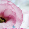 REVIEW: The Billionaire takes a Bride by Jessica Clare