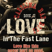REVIEW: Love: In the Fast Lane by Rie Warren