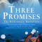 REVIEW: Three Promises: The Billionaire Brothers by Lily Everett