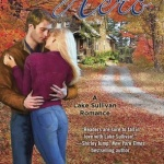Spotlight & Giveaway: Hometown Hero by Cate Cameron