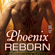REVIEW: Phoenix Reborn by JD Tyler