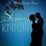 REVIEW: Stormy Knight by J.D. Mason