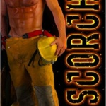 REVIEW: Scorch by Dani Collins