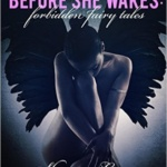Spotlight & Giveaway: Before She Wakes by Sharon Lynn Fisher