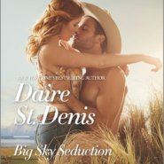 REVIEW: Big Sky Seduction by Daire St Denis