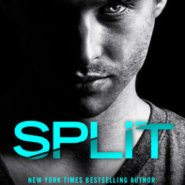 REVIEW: Split by J.B. Salsbury