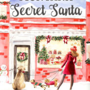 REVIEW: Montana Secret Santa by Debra Salonen