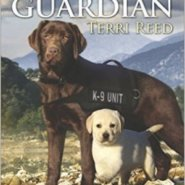 Spotlight & Giveaway: Guardian by Terri Reed