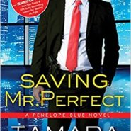Spotlight & Giveaway: Saving Mr. Perfect by Tamara Morgan