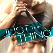 Spotlight & Giveaway: Just the Thing by Marie Harte