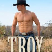 REVIEW: Troy  by Amy Andrews
