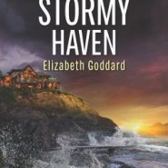 REVIEW: Stormy Haven by Elizabeth Goddard