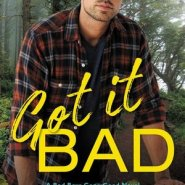 REVIEW: Got It Bad by Christi Barth