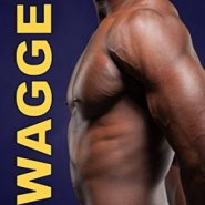 Spotlight & Giveaway: Swagger by Liz Lincoln