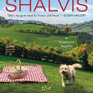 REVIEW: The Good Luck Sister by Jill Shalvis