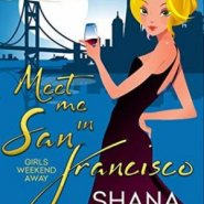 REVIEW: Meet Me In San Francisco by Shana Gray