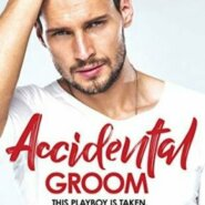 REVIEW: Accidental Groom by Dana Mason