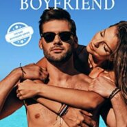 REVIEW: The Careless Boyfriend by Erika Kelly