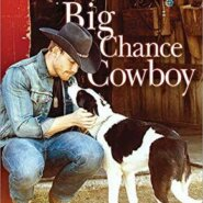 REVIEW: Big Chance Cowboy by Teri Anne Stanley