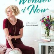 REVIEW: The Wonder of Now by Jamie Beck
