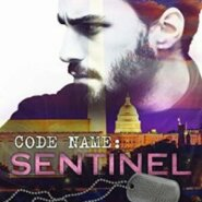 Spotlight & Giveaway: Code Name: Sentinel by Sawyer Bennett