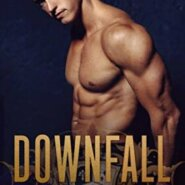 Spotlight & Giveaway: Downfall by Willow Aster