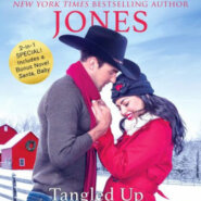 REVIEW: Tangled Up In Christmas by Lisa Renee Jones