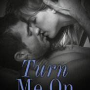 REVIEW: Turn Me On by Dylan Rose