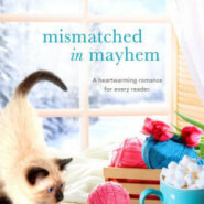 Spotlight & Giveaway: Mismatched in Mayhem by L.E. Rico